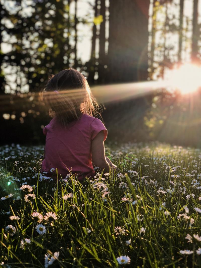 Seguro de vida: garantia de renda e proteção financeira à família
