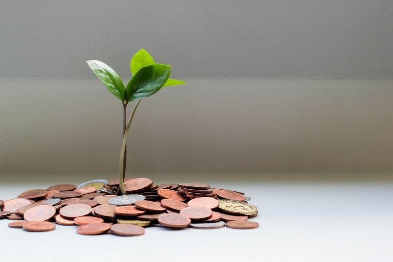 Educação financeira ajuda a realizar sonhos
